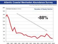 Menhaden Decline 1984-2009